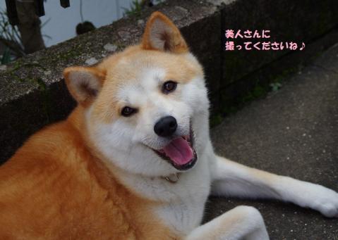 036うめちゃん20130616