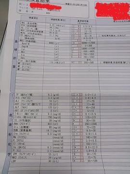 NCM_0312うめ20130713
