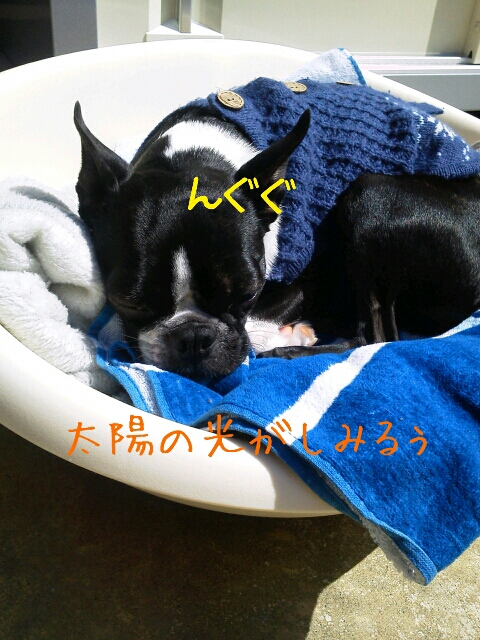 fc2_2013-04-22_10-45-26-701.jpg