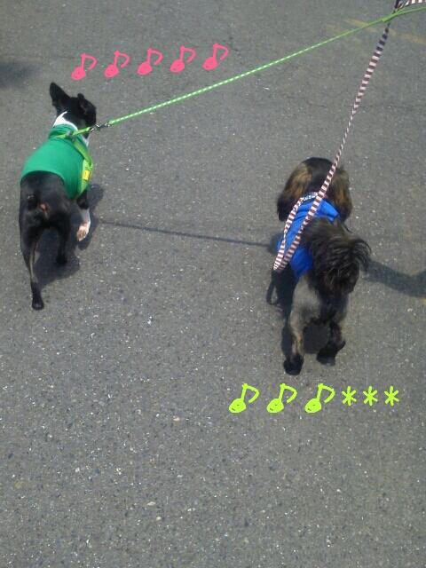 fc2_2013-04-28_15-12-34-571.jpg
