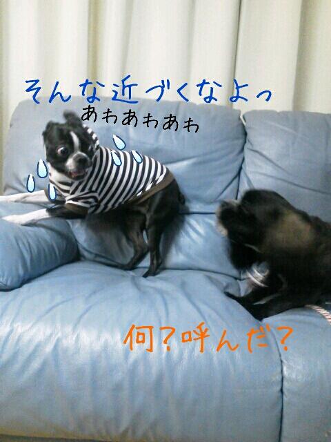 fc2_2013-04-28_16-04-05-769.jpg