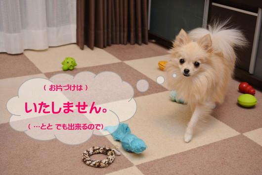 530px20131112_MiTo-01-2.jpg