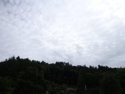 SC02612.jpg