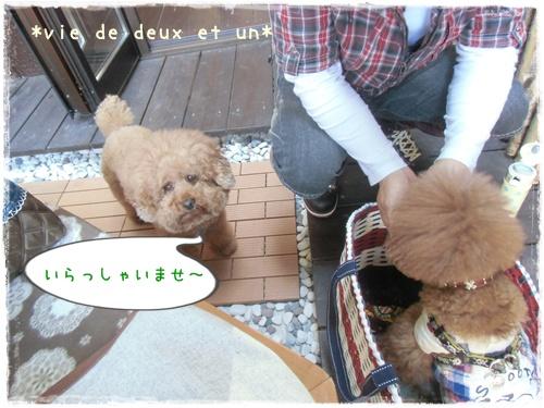 20130428blog4.jpg