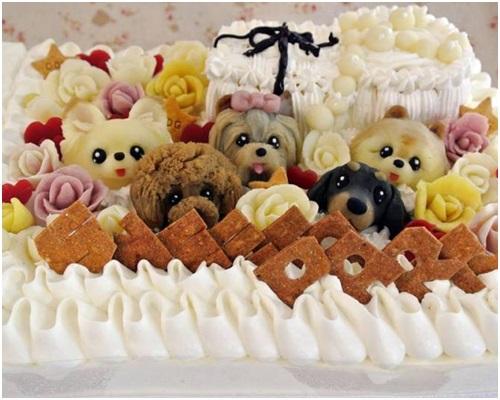 犬のケーキ2