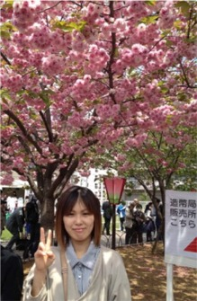 造幣局の桜01