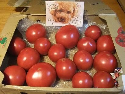 父ちゃんトマト大好きなんですよね~♪