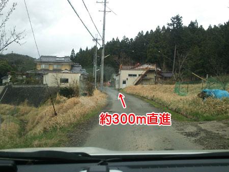DSC_7070aquow45.jpg