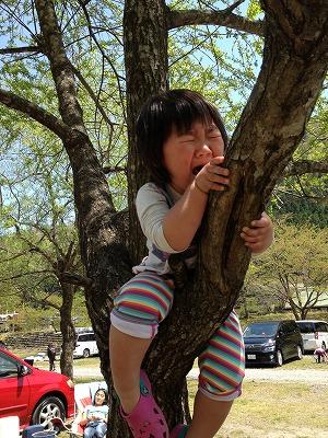 写真 2013-04-29 12 12 42