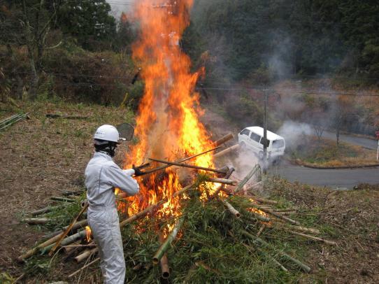 竹、燃やします!