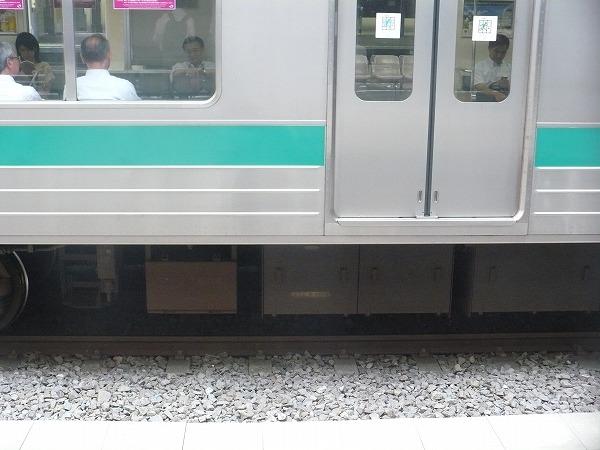 P1040894.jpg