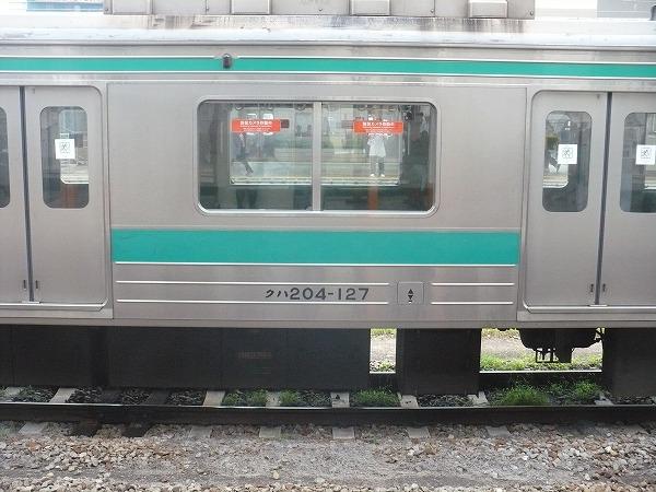 P1040966.jpg