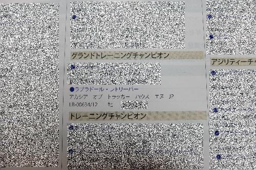 20141130 (3)