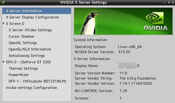 nVIDIA313_30_Xsettings.jpg