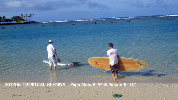 2012年6月 Hawaii SUP SHOP - TROPICAL BLENDS(Stand Up Paddle Board)