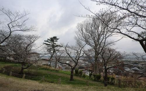2013-5-5能代公園④