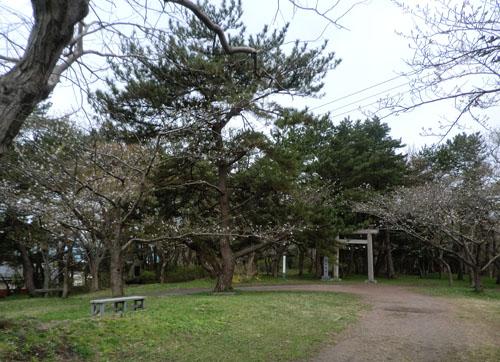 2013-5-5能代公園②