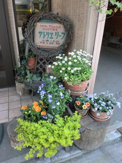 2013-6-4店前のプランター③