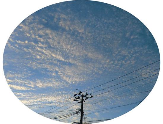 2013-9-11秋の空