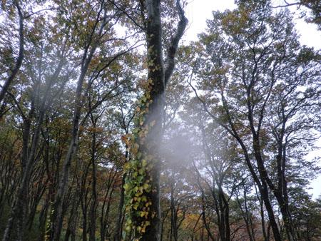 2013-10-13二ツ森登山③