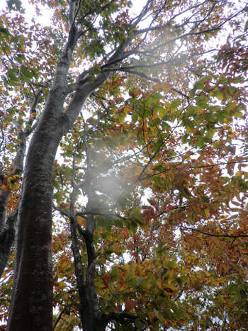 2013-10-13二ツ森登山⑤jpg