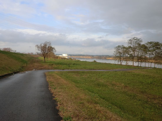 2013-11-3中川原堤防散策⑥