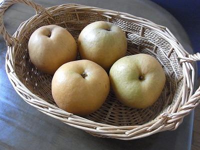最終日の梨