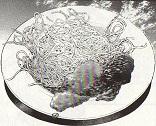 この世で最も濃厚なトマトソース・スパゲティ図