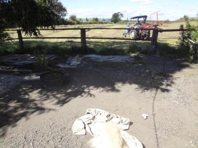 牧場にトラクター