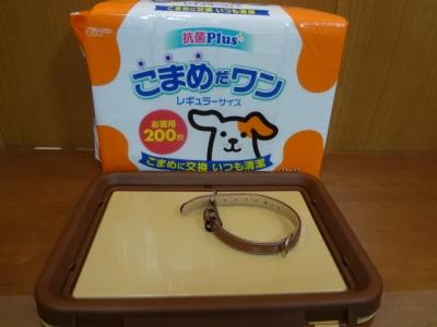 ワンちゃん用首輪とトイレ