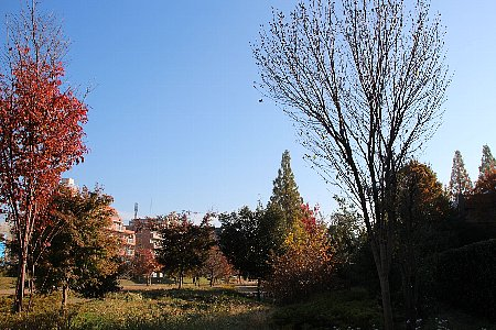 07_1067-450.jpg