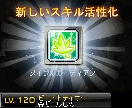 Maple140124_134438.jpg
