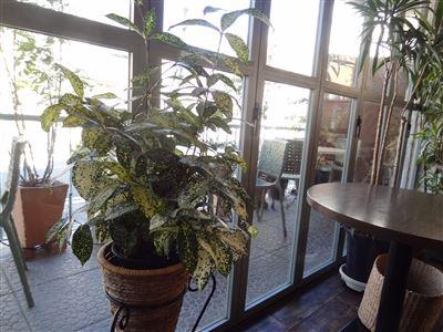 パフカフェの店内の様子2