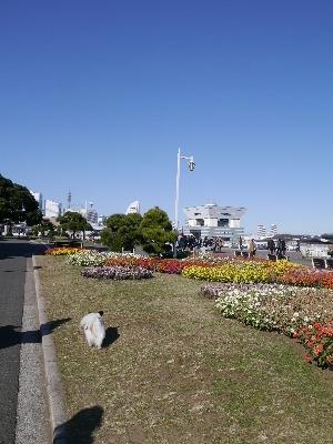 横浜女子会14