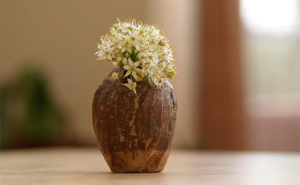 flowerpot080301.jpg