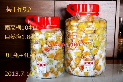 梅瓶詰め (400x267) - コピー - コピー