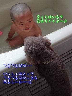 T3dSizejwWaqh7E1373970079_1373970644.jpg