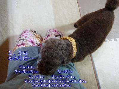 we3m9rh6I1euXJP1390041306_1390041660.jpg