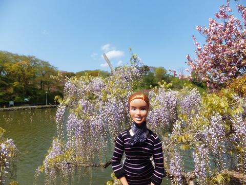 fujieda-20130413-07s.jpg