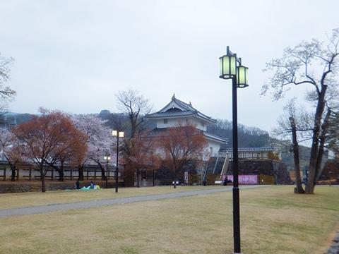 kofu-20130330-19s.jpg