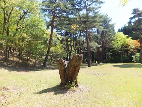 oohito-20130427-08s.jpg