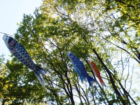 oohito-20130427-11s.jpg