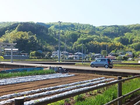 oohito-20130427-21s.jpg
