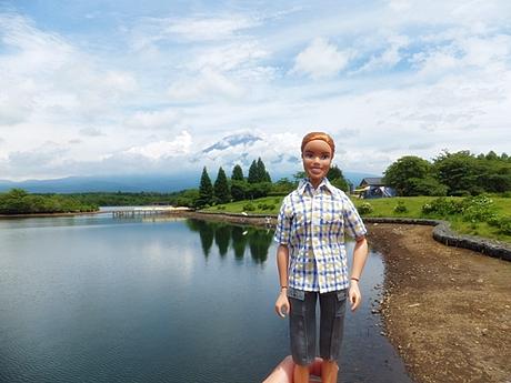 tanuki-20130622-08s.jpg