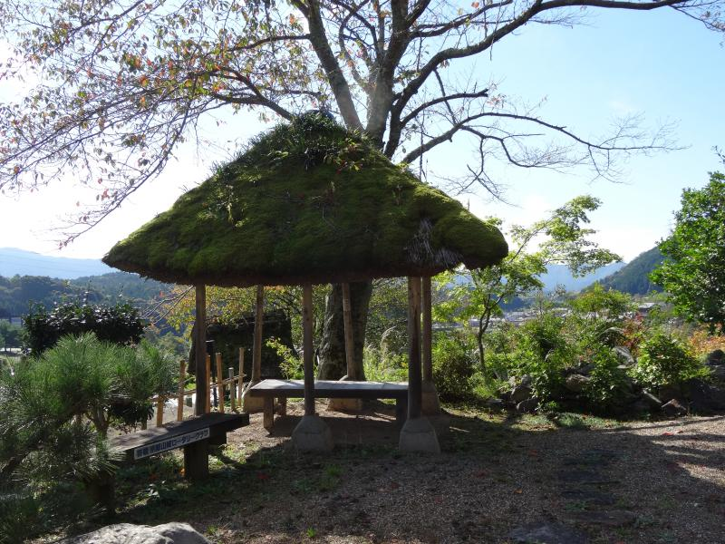 禅定寺12