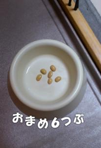 140203_mame.jpg