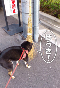 140207_houki.jpg