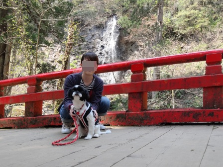 20130707 羽黒山 (3)
