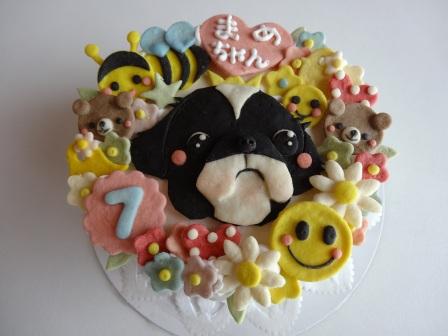 まめちゃん7歳ケーキ