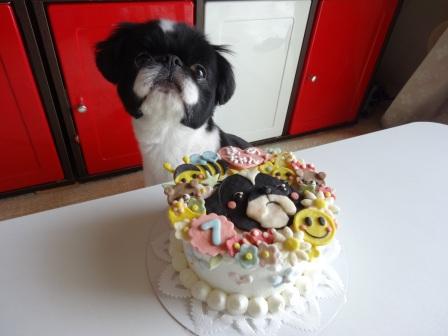 まめちゃん7歳ケーキ 2